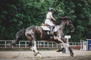 Le test de sélection du BPJEPS Activités Equestres
