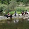 Référentiel professionnel du BPJEPS Activités Equestres