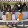 Les exigences préalables à l'entrée en formation au BPJEPS AE mention Tourisme Equestre