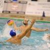 Formation du joueur de Water-Polo (1 jour)