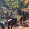 BPJEPS Activités Équestres mention Tourisme Équestre